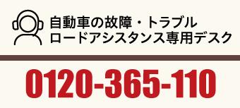 0120365110